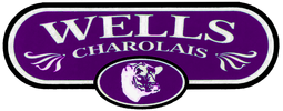 Wells Charolais Ranch